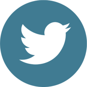 Twitter logo - blue